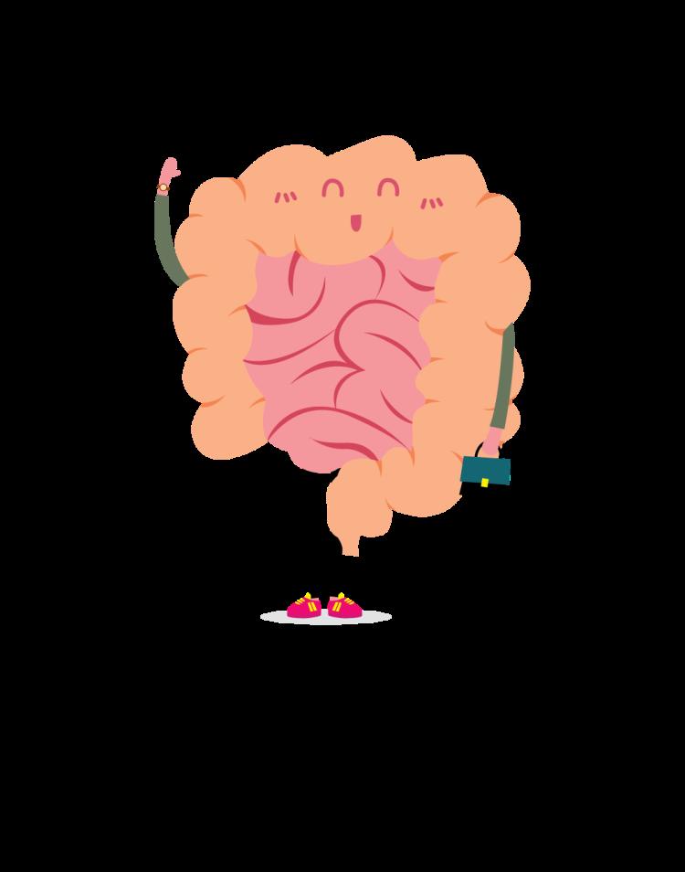 Cartoon of intestine
